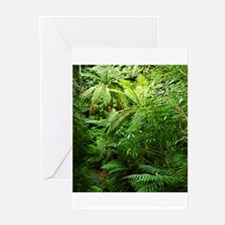 Punga Tree Ferns NZ Greeting Cards