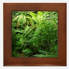 Punga Tree Ferns NZ Framed Tile