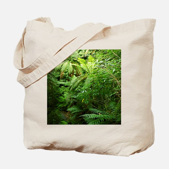 Punga Tree Ferns NZ Tote Bag