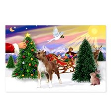 Santa's treat /Amer Staff Postcards (Package of 8)