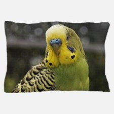 Funny Love birds Pillow Case