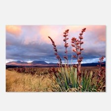 Sunset National Park NZ Postcards (Package of 8)