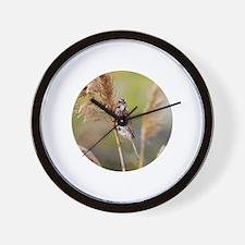 Unique Sea sparrow Wall Clock