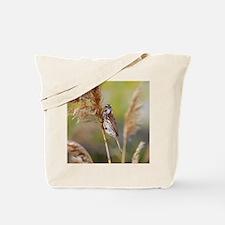Cute Sea sparrow Tote Bag