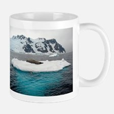 Seal and Iceburg Mugs