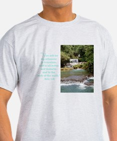 YS Falls Acts 1:8 T-Shirt