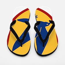 Blue Falcon Flip Flops