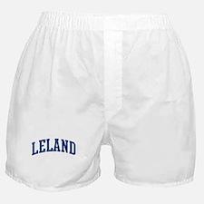 LELAND design (blue) Boxer Shorts