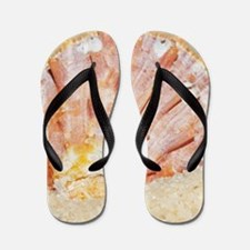 holiday mood, major Asian clam in fine Flip Flops