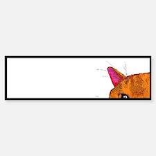 Peek a Boo Sticker (Bumper)