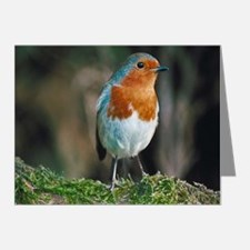 Robin Note Cards (Pk of 20)