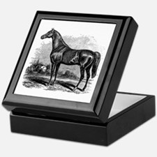 Vintage Race Horse American Black Whi Keepsake Box
