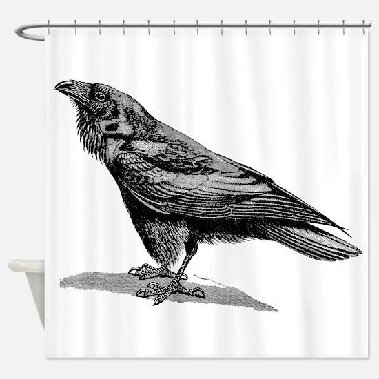Vintage Raven Crow Black Bird Black Shower Curtain