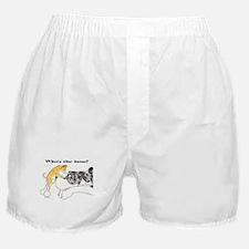 FchiMtlMrl Boss Boxer Shorts
