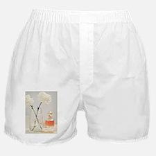 Funny Shelf Boxer Shorts