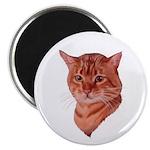 Bengal Tabby Cat Magnet