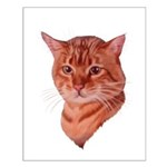 Bengal Tabby Cat Small Poster