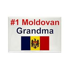 Moldovan Grandma Rectangle Magnet