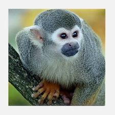 Monkey004 Tile Coaster