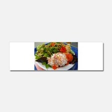 Hawaiian poki bowl Car Magnet 10 x 3