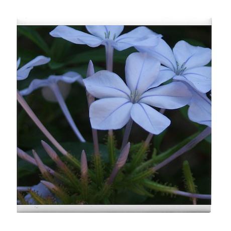 Blue Flowers Tile Coaster