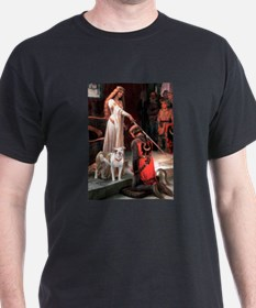 The Accolade / Pitbull T-Shirt