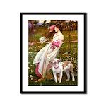 Windflowers / Pitbull Framed Panel Print