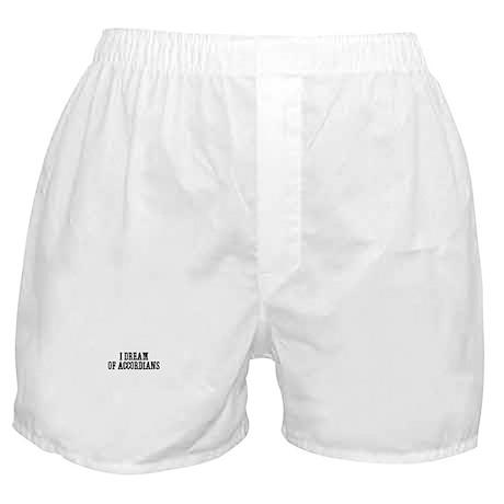I dream of accordians Boxer Shorts