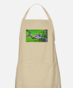 Squirrel on a branch - like me? Apron