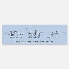I am a Professional: Lunging / Bumper Bumper Bumper Sticker