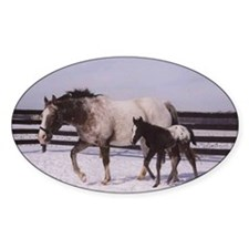 2002 Foals Oval Decal