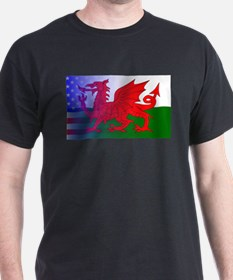 Wales Dragon Stars and Stripes T-Shirt