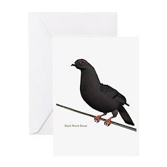 Dark Rock Dove Greeting Card