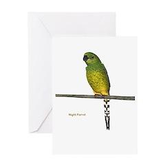 Night Parrot Greeting Card