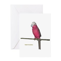Galah Cockatoo Greeting Card