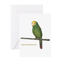 Double Yellow Amazon Parrot Greeting Card