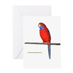 Crimson Rosella Parrot Greeting Card