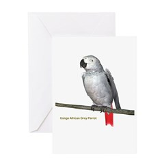 Congo African Grey Parrot Greeting Card