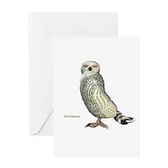 Snow Owl Greeting Card