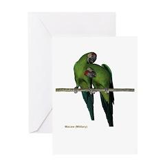 Military Macaw (pair) Greeting Card