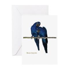 Hyacinth Macaw (pair) Greeting Card