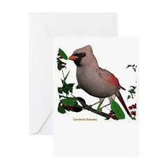 Cardinal (female) Greeting Card