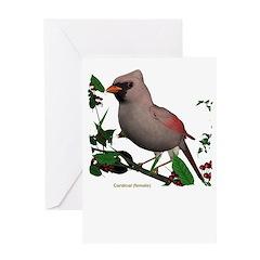 Cardinal (female) Greeting Card