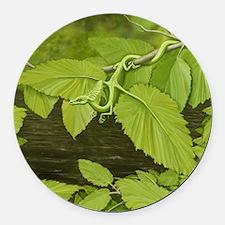Earth Leaf Dragon Round Car Magnet