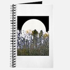 Cool Aloramyst Journal