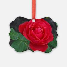 Cute Flower Ornament