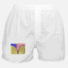 USA Zipper Boxer Shorts