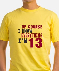 I Know Everythig I Am 13 T