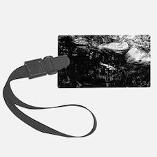 Reflecting Pond (Black & White) Luggage Tag