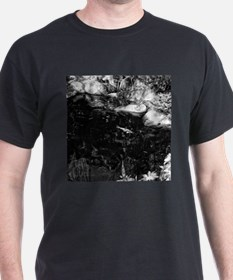Reflecting Pond (Black & White) T-Shirt